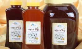 자연으로 꿀벌나라게시글의 첨부 이미지